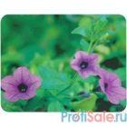 Коврик для мыши Buro BU-M20012 рисунок/цветы [510991]