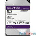 """10TB WD Purple (WD101PURZ) {Serial ATA III, 7200- rpm, 256Mb, 3.5""""}"""
